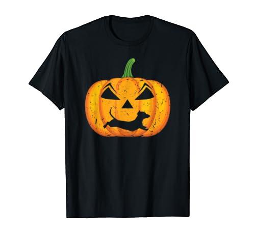 Halloween Pumpkin Dachshund Costume Weenie Dog Dad Gifts T Shirt