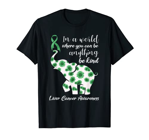 In A World Where You Can Be Anything Liver Cancer Shirt