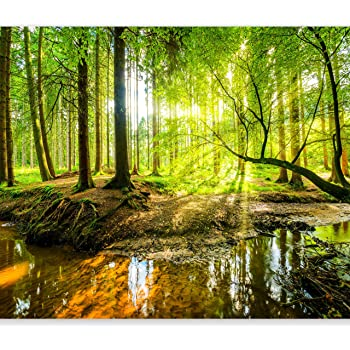 "artgeist Wall Mural Forest 116""x83"" XXL Peel and Stick Self-Adhesive Wallpaper Removable Large Sticker Foil Wall Decor Print Picture Image Design c-B-0241-a-a"