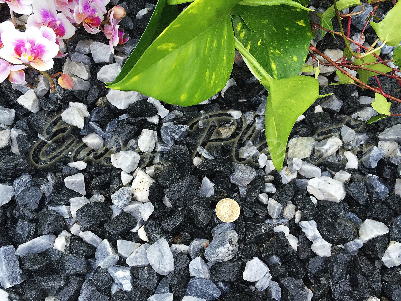 Virutas de grava piedra pizarra disuadir hierba jardín Patio Camino planta Topping – Mármol hielo negro (14 – 20 mm), 5KG: Amazon.es: Hogar