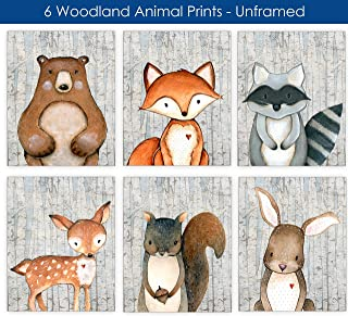 Woodland Nursery Decor for Boys Animal Pictures Wall Art - Baby Room Animal Prints - Kids Bedroom - Bear Deer Fox Raccoon Rabbit Squirrel Decor - CHOOSE SIZE and MAT or PRINT ONLY - SET OF 6 UNFRAMED