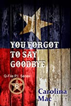 You Forgot to Say Goodbye (Q-File P.I. Series Book 6)