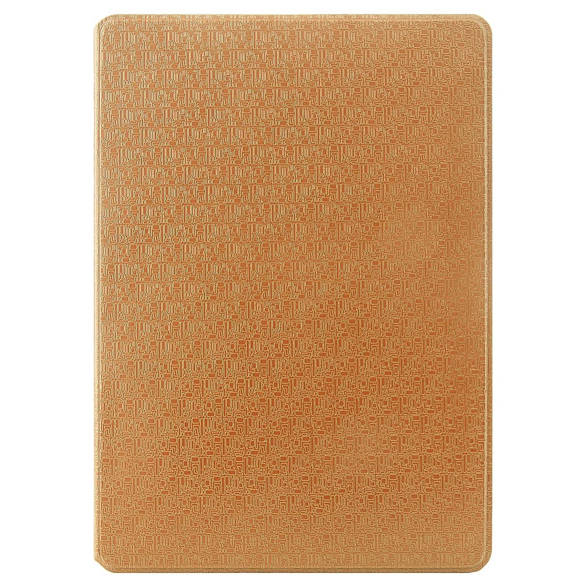 SumacLife Vegan Leather Design Portfolio Case for iPad Air 2 - Self Stand, 3 Card Slots, Handle, and Camera Hole (LthrDsgnIPA2GLD)
