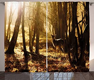 Ambesonne Cabin Decor Curtains, Young Deer at Sunset in the Forest National Park Outdoors Netherlands Photo, Living Room Bedroom Window Drapes 2 Panel Set, 108 W X 63 L Inches, Yellow Brown
