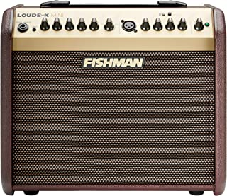 Best acoustic guitar amps Reviews