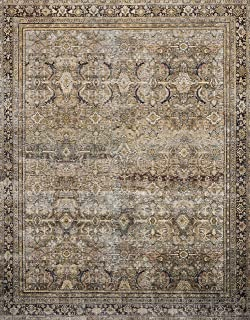 Loloi ll Layla Collection Printed Vintage Persian Area Rug 5'0