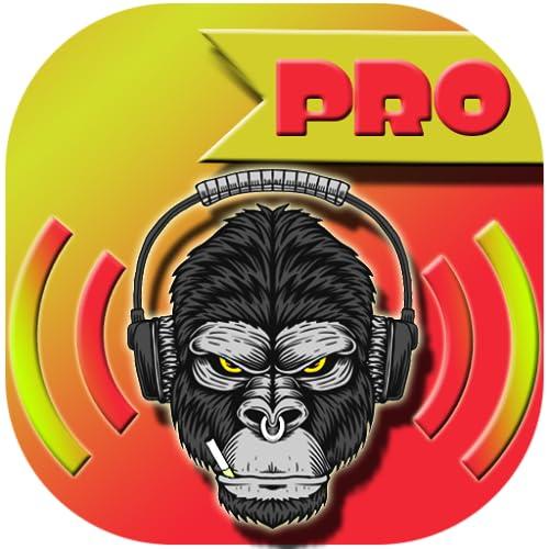 Volume booster Pro 2020
