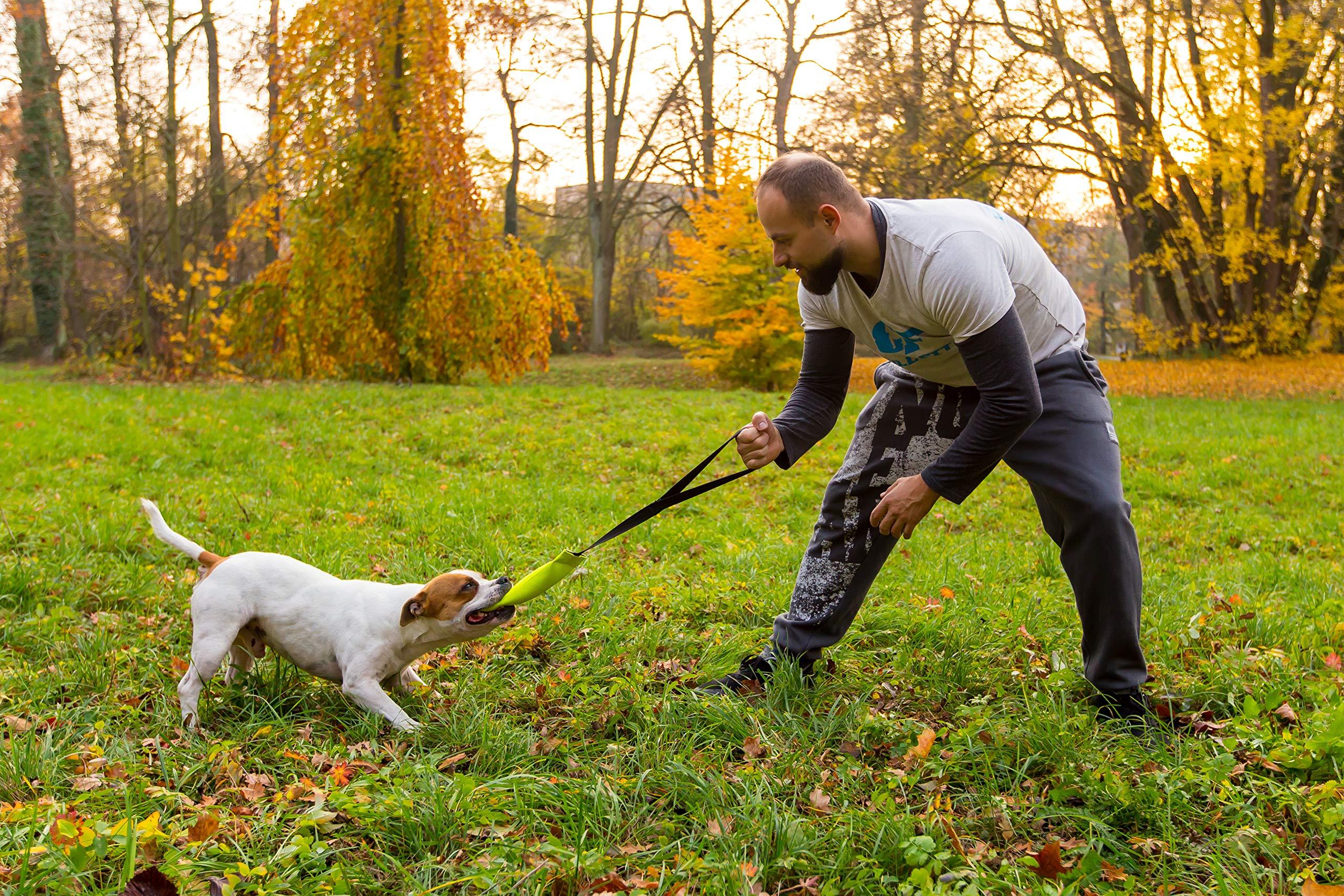 Bull Fit bungee mordedor perro, 25 cm Embutido de manguera