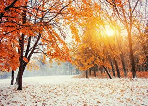 7x5 ft Sunset Red Maple Leaves Snow Winter Photography Backdrop Christmas Background