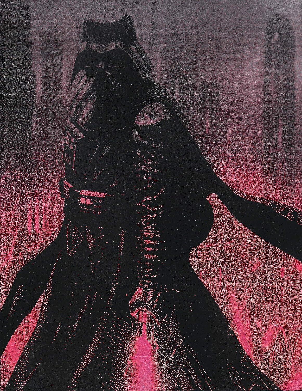 Darth Vader Lightsaber Star NEW Poster Metal Painting Virginia Beach Mall Wars