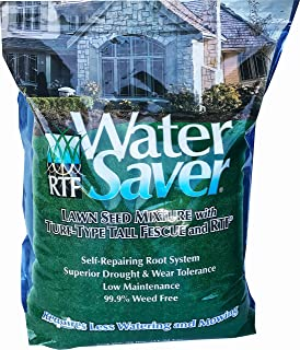 Barenbrug 11625 Water Saver Grass Seed, 25-Pound (Discontinued by Manufacturer)