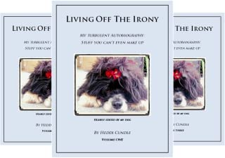 Living Off The Irony (6 Book Series)