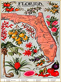A SLICE IN TIME Florida The Everglade Everglades State Map United States of America Vintage Travel Advertisement Art Poster Print. Measures 10 x 13.5 inches