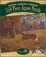 "Reflective Art 550 Piece The Moment Before Gone Jigsaw Puzzle Set, 11.5"" L x 2"" H x 9.5"" W"