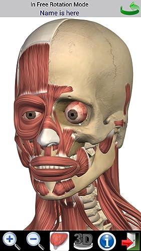 『Visual Muscles 3D』の3枚目の画像