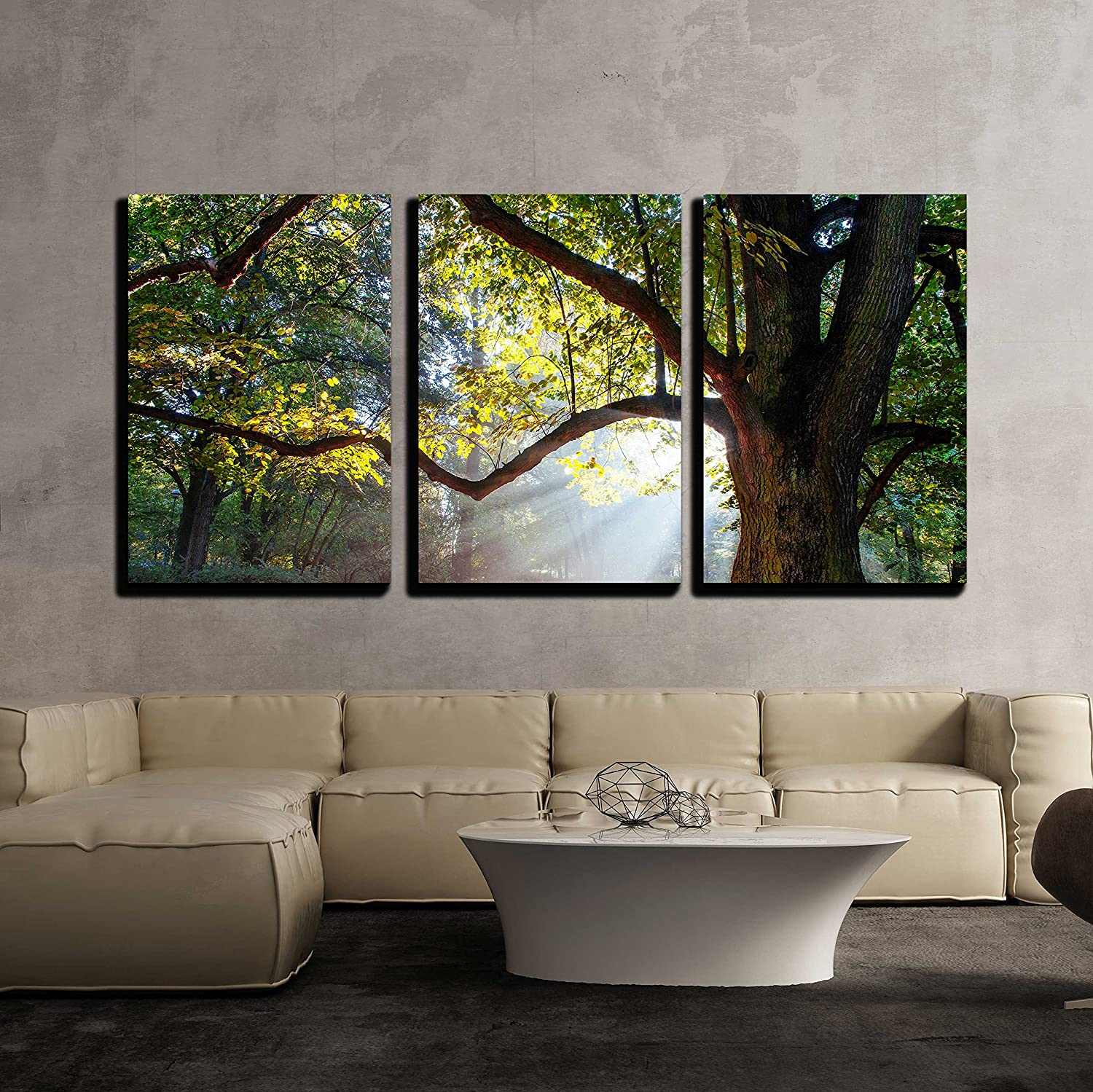 Wall26 - 3 Piece Canvas Wall Art - Mighty Oak Tree - Modern Home Decor Stretched and Framed Ready to Hang - 24 x36 x3 Panels