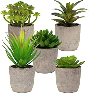 5 Artificial Succulent Plants with Pots – Realistic Greenery Mini Potted Faux Plant Arrangements for Home Office Decor, Do...