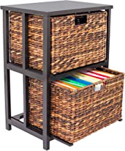 BirdRock Home Abaca 2 Tier File Cubby Cabinet – Vertical Storage Furniture –..