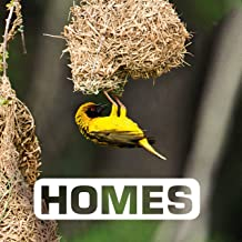 Homes (Picture This) (English Edition)