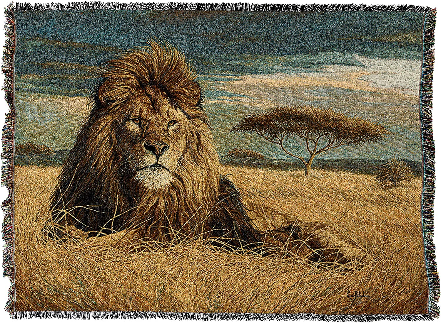 Pure Country Weavers   King of The Pride Lion Africa Acacia Tree Woven Tapestry Throw Blanket with Fringe Cotton USA 72x54