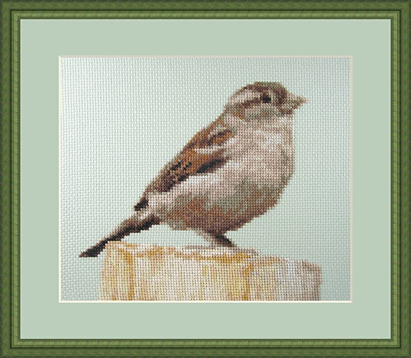 Little Rest Counted Cross Stitch Kit By Orcraphics