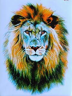 DD Löwe König der Tiere Lion Gross Sticker Aufkleber Folie 1 Blatt 340 mm x 260 mm wetterfest