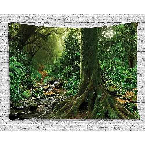 Forest Scene: Amazon com