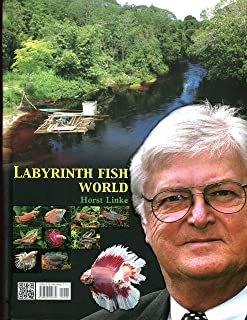 Labyrinth Fish World