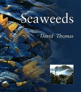 Seaweeds (Smithsonian's Natural World Series)