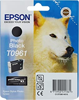 Epson T0961 Tintenpatrone Husky, Singlepack Foto schwarz
