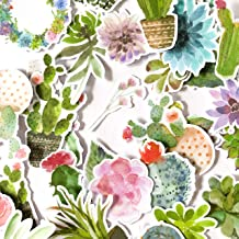 Navy Peony Watercolor Cactus Stickers and Succulent Decals | Cute Aesthetic Stickers for Water Bottles, Phone Cases, and Laptops | Trendy Stickers for Planners, Scrapbooking, and Bullet Journalling