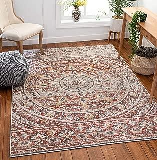 Best vintage looking area rugs Reviews