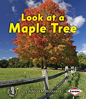 Look at a Maple Tree (First Step Nonfiction ― Look at Trees)