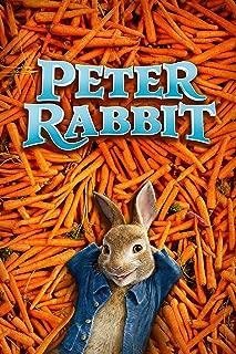 Best rabbit hutch pics Reviews