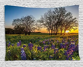 Ambesonne Nature Tapestry by, Country Scenery with Lavender Meadow at Sunset Spring Beauty Foliage Eco Picture, Wall Hanging for Bedroom Living Room Dorm, 80WX60L Inches, Multicolor