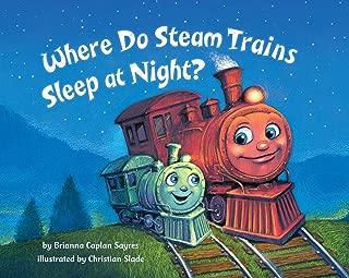 steam trains books