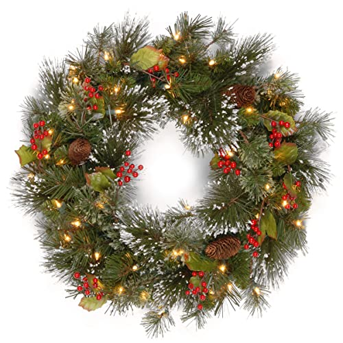 National Tree 24 Inch Wintry Pine Wreath with Cones, Red Berries,  Snowflakes and 50 - Christmas Wreaths Clearance: Amazon.com
