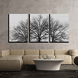 wall26 - 3 Piece Canvas Wall Art - Trees in Winter Gray Landscape - Modern Home Decor Stretched and Framed Ready to Hang - 16