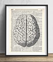 Human Brain Illustration (#1) Upcycled Dictionary Art Print 8×10