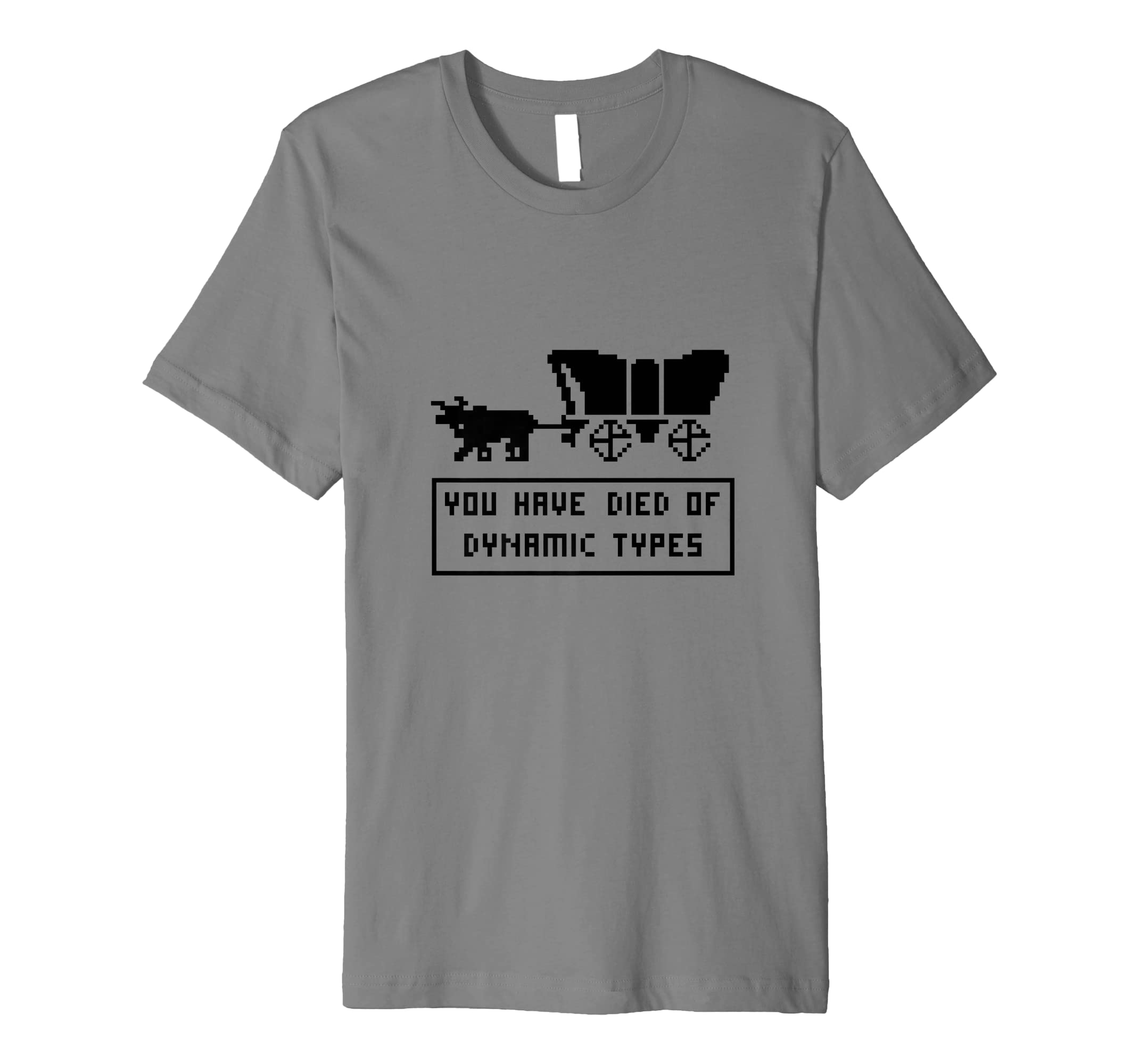 You Have Died of Dynamic Types T-Shirt-Teehay