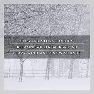 Best wind and snow sounds Reviews