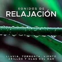 Sonidos de Relajacion - Lluvia, Tormenta, Viento, Grillos y Olas del Mar