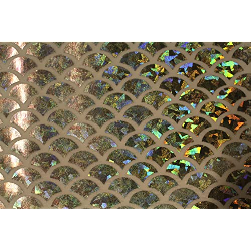 5a427c91905 ASVP Shop® Mermaid Scale Fabric Fish Tail Material with Stretch Spandex  Lycra - 145cm Wide