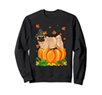 Thanksgiving Day Pug Dog Costume Pumpkin Gifts T-shirt Sweatshirt Black