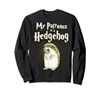 My Patronus Is A Hedgehog Harry Fan Cute Gift Shirts Sweatshirt Black