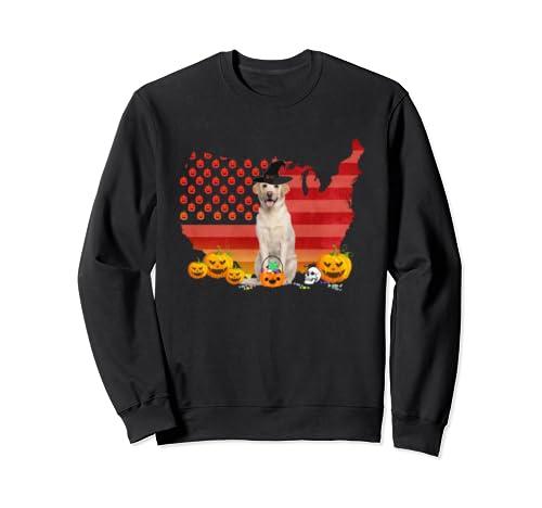 Funny Labrador Dog Halloween Costume Gift Flag America Sweatshirt