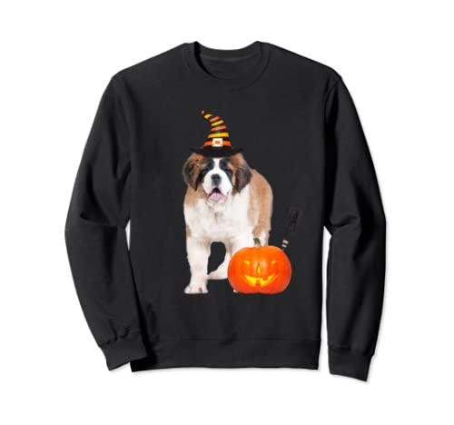 Saint Bernard Witch Hat Halloween Dog Costume Sweatshirt