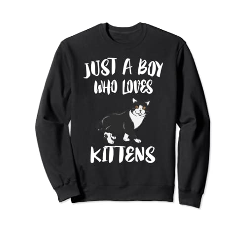 Just A Boy Who Loves Kittens Cats Gift Sweatshirt