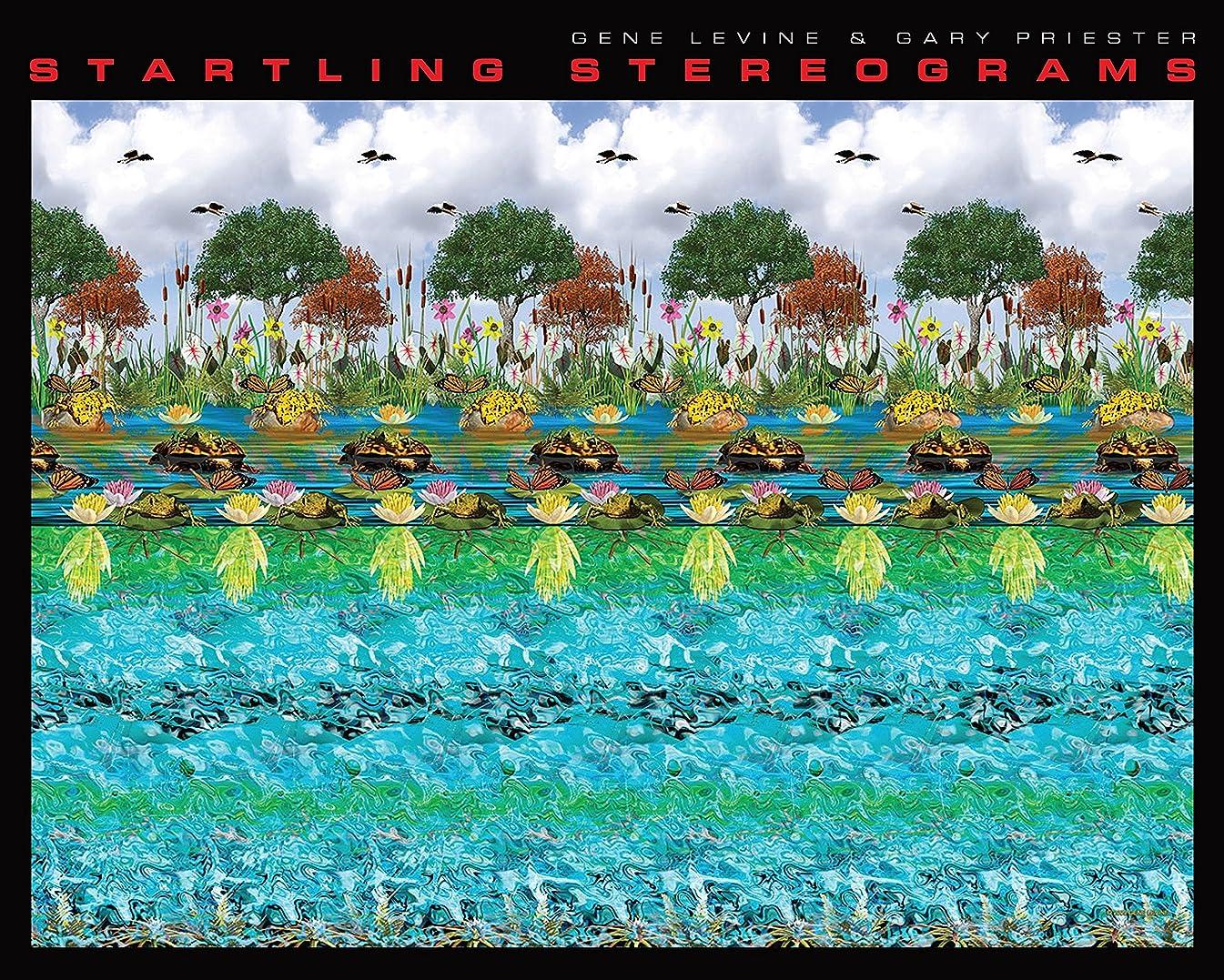 分割特別なヒステリックStartling Stereograms