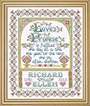 Design Works Crafts Tobin 356745 Loves Promise Counted Cross Stitch Kit-8